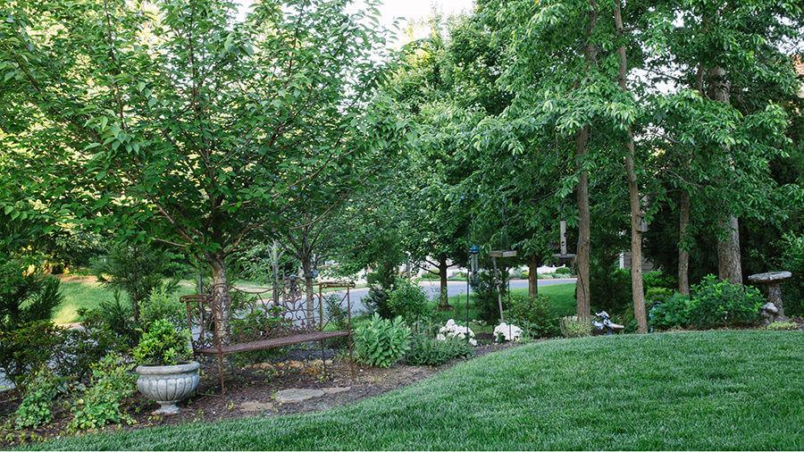 landscaping-design-102