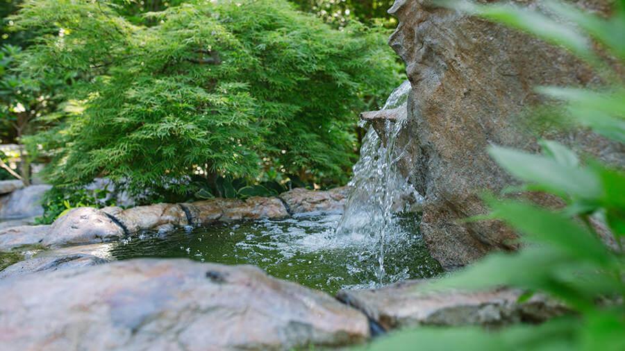 water-gardens-064