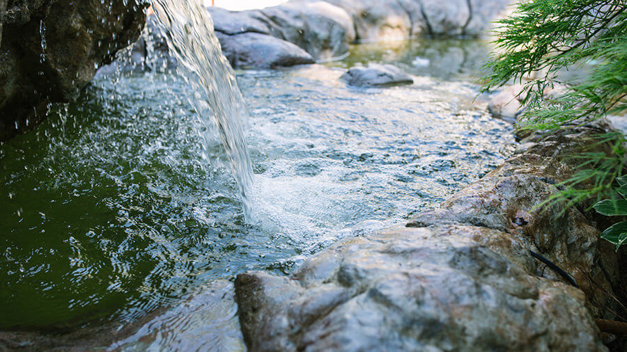water-gardens-065